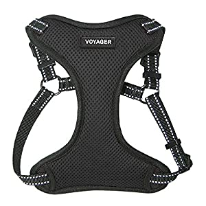 Voyager Step-In Flex Dog Harness – All Weather Mesh, Step In Adjustable Harness for Small and Medium Dogs by Best Pet Supplies