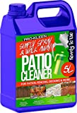 Pro-Kleen 260735 Ready to Use Simply Spray & Walk Away Green Mould and Algae Remover (1 x 5 litres) Patio, Fencing and Decking Cleaner, Multi