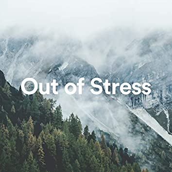 Out Of Stress. Calm And Relax