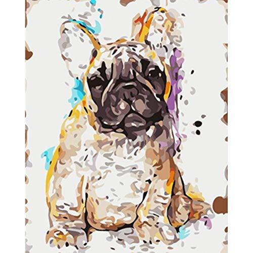 LPHMMD Schilderij Door Getallen DIY Schilderij Door Getallen DIY Luie bulldog gevoel onrecht Animal Canvas Kamer Decoratie Kunstfoto Kind Gift 40 * 60CM