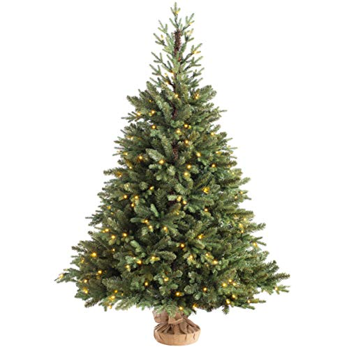 WeRChristmas Norway Spruce Potted Christmas Tree with 190 Chasing Warm LED Lights, Multi-Colour, 5 feet/1.5m