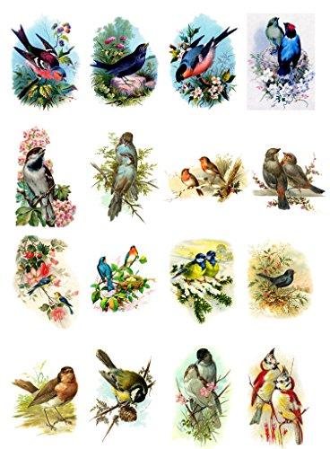 Decoupage Papier Pack (20 blatt 10x15cm) Beautiful Birds FLONZ Vintage Papier