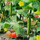 HUTHIM Malla para Jardin Exterior, Enredadera Malla 2m x 5m, Sea Tutores ParaPlantas Tomates y Otras Plantas Trepadoras, Utilizado en Huerto, Invernadero, Balcone etc.
