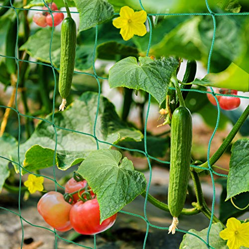 HUTHIM Ranknetz Rankhilfe Garten Tomaten Gurken 2x5m, Großer Rastergröße Sehr Passend Netz für Kletterpflanzen Gewächshaus Zubehör, mit 18Pflanzenclips 12Pflanzenbindern 20m Linie