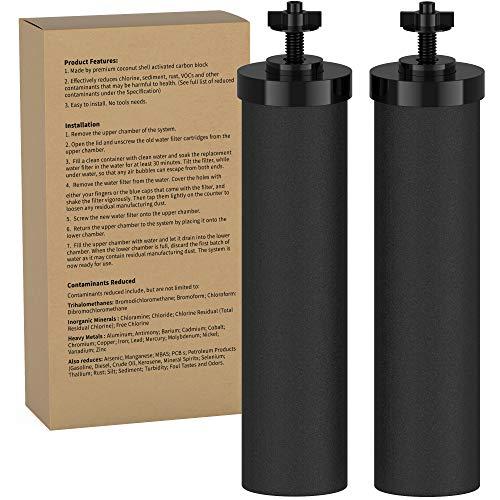 DEW FILTERS BB9-2 schwarze Wasserfilter-Reinigungskomponente für Reisende, Nomad, King, Big Series und Doulton Super Sterasyl | Schwerkraft-Luftreiniger Filter | 2 Stück