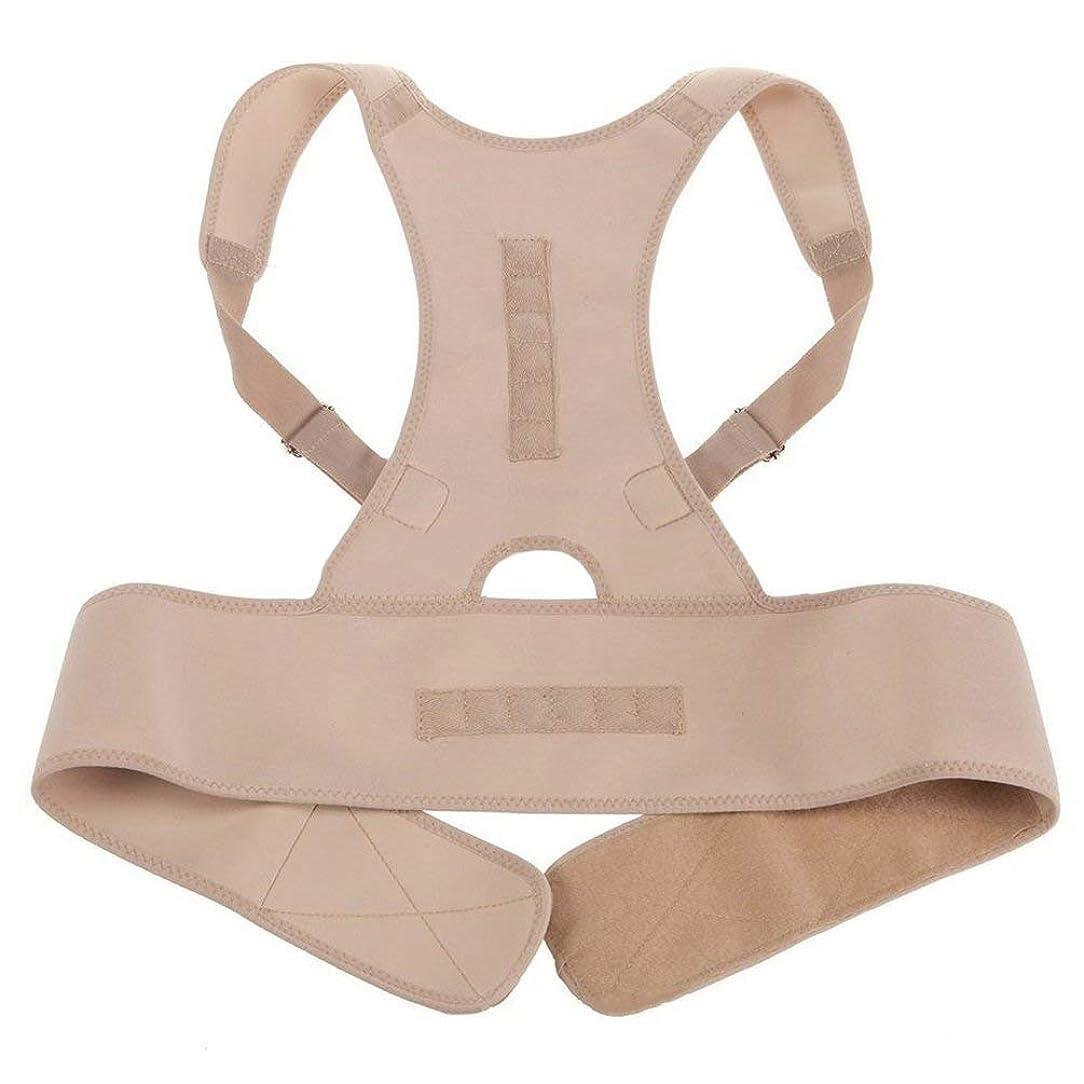 シダ書き出すテメリティネオプレン磁気姿勢補正機能バッドバックランバーショルダーサポート腰痛ブレースバンドベルトユニセックス快適な着用 - 肌の色L/XL