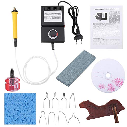 Fydun Kit de leña de 25 vatios, Herramienta de Madera de Hierro para soldar con bolígrafo pirográfico, Puntas de Alambre de leña para tallar relieves(EU220V)