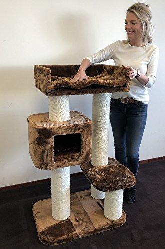 Tiragraffi per gatti grandi Devon Rex Marrone xxl maine coon robusto adulti grande gatto albero enormi giganti XL