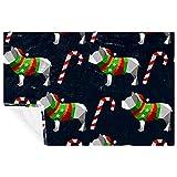 BestIdeas Manta de Navidad para perros y caramelos con estampado de bastón suave y...