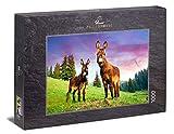 Ulmer Puzzleschmiede - Puzzle Burro en la montaña: Puzzle de 1000 Piezas - Dos burros en un Verde Prado Alpino en los Alpes en Austria