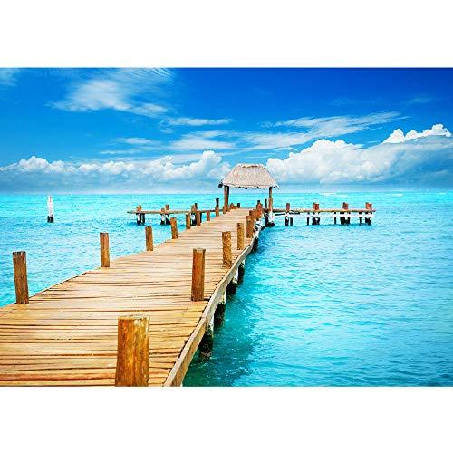 Fototapete Strand - ALLE STRANDMOTIVE auf einen Blick ! Vlies PREMIUM PLUS - 200x140 cm - PATH TO PARADISE - Meer Nordsee Ostsee Wasser Blau Himmel Sonne Sommer - no. 159