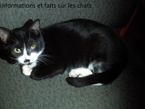 Informacion y datos sobre los gatos