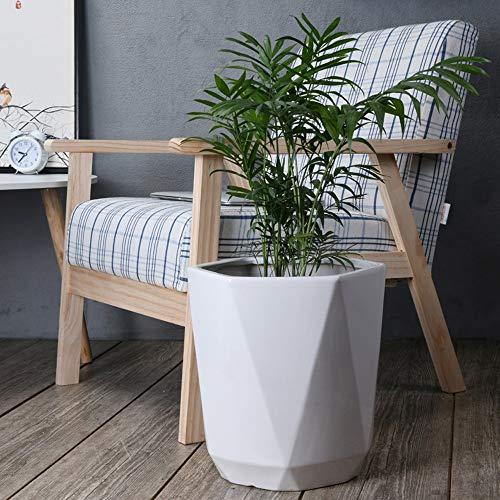 Fighrh Hexagonal Cerámica Extra Large Maceta Nordic Interior Suculenta Maceta Sala de...