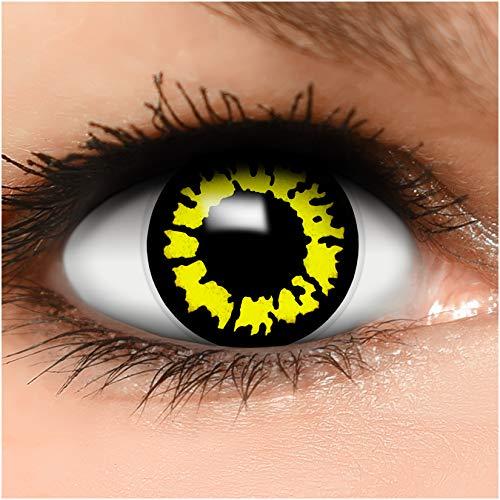 Farbige Kontaktlinsen Yellow Wolf in gelb + Behälter - Top Linsenfinder Markenqualität, 1Paar (2 Stück)