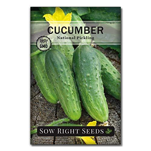 母猪右种子 - 国家胡瓜种子种植 - 非转基因种子传家宝并指示植物和成长家庭菜园,大园艺礼品(1)