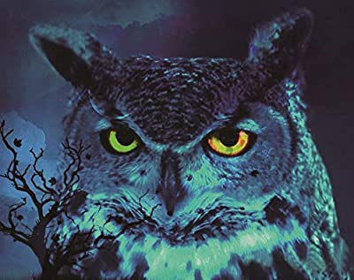 Amyline Blue Owl Diamond Painting Rhinestone Pasted Embroidery Cross Stitch Arts Craft Home Wall Decor