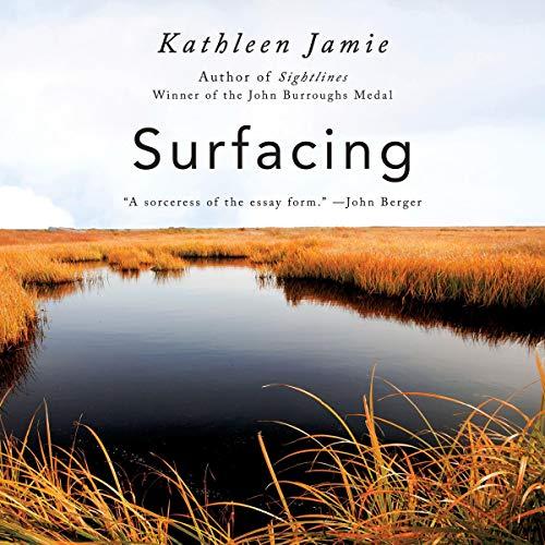 Surfacing audiobook cover art
