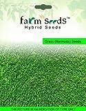Bermuda Grass Seeds - Best Reviews Guide
