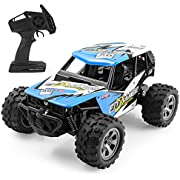 HALOFUN RC Cars Kids, 1:20 Scale Electric RC Car Off Road Vehicle 2.4GHz Radio Remote Control Car 2W High Speed Racing Truck Kids Adults