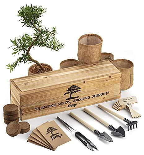 Bonsai Tree Kit – Mini-Bonsai Plant Growing Kit to Easily Grow 5 Bonzai Trees Indoor w 5 Types of Bonsai Seeds, Bonsai Tools, Plant Pots, Wood Gift Box – Unusual Gardening Gifts for Women & Men