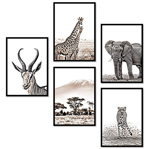 ZAUBERBILD Premium Poster Set Wandbild   Afrika Tiere Savanne   5x DIN A4 für Wohnzimmer