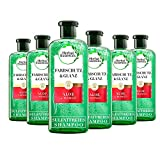 Herbal Essences PURE:renew Farbschutz & Glanz Shampoo Mit Aloe + Mango, 6er Pack (6 x 225 ml),...