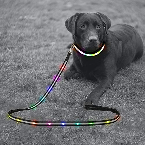 Yacig LED Dog Leash - USB Rechargeable, Color Changing Night Safety Dog Leashes for Small Medium and Large Dogs