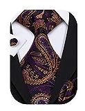 Barry.Wang Purple Gold Ties for Men Paisley Necktie Set Wedding Business
