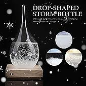 ストームグラス テンポドロップ 天気予報器 結晶観察器 クリエイティブ 晴雨予報 カスタムメイド 創造性 ガラス製品 天気予報士 ストーム ガラスボトル デスクトップ ウェザーステーション レタリング 家の装飾 ホリデーギフト
