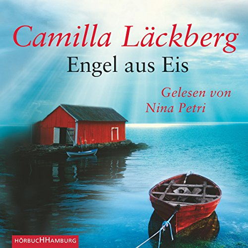 Engel aus Eis audiobook cover art