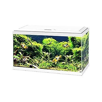 Ciano White Aqua 60 LED Tropical Glass Aquarium - Includes Filter, Lights & Heater 58L