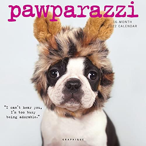 Graphique Pawparazzi Wall Calendar, 16-Month 2022 Wall Calendar with Cute Dog Photographs, 3 Languages & Major Holidays, 2022 Calendar, 12' x 12'