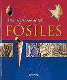 Atlas Ilustrado De Los Fosiles/ Illustrated Atlas of Fossils (Spanish Edition) by Vojtech Turek Jaroslav Marek Josef Benes(2005-06-30)