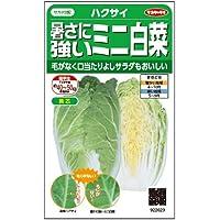 暑さに強いミニ白菜