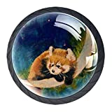 Raccons Panda Moon - Tirador de cristal para cajón, diseño de luna, color rojo