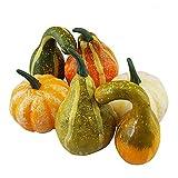 Oyria Mini calabaza artificial, 6 unidades de calabazas falsas variadas de calabazas falsas para Halloween, otoño, Acción de Gracias, jardín, hogar y decoración de cosecha