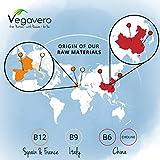 Zoom IMG-2 vitamina b12 1000 mcg vegavero