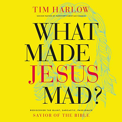 What Made Jesus Mad? audiobook cover art