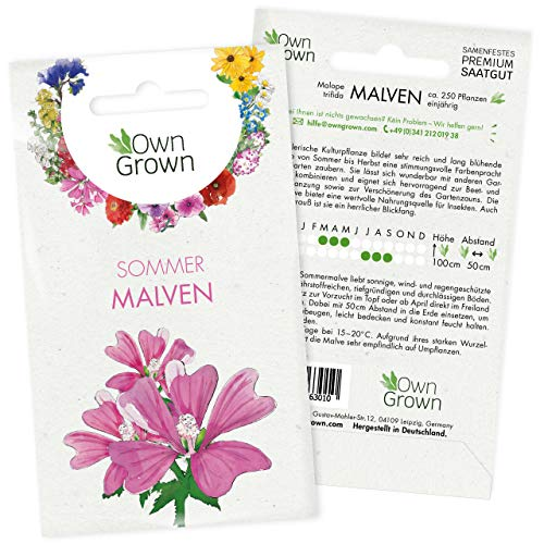 Malve Samen: Premium Sommermalve Samen für ca. 250 blühende Malven Pflanzen – Schöne Malven Blumen Samen kaufen – Blumensamen, Blumenwiese Samen, Own Grown Samen, Wildblumensamen