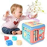 LVJING Baby Activity Cube, Multi-Function 6 in 1 Interactive Activity Cube, Early Learning Educational Play Activity Cube Center for 1 2 3 Years Old Boys & Girls