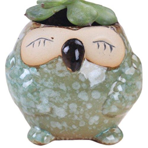Outflower Pot de Fleur Céramique Hibou Pots de Plantes à la Viande Décoration d'Intérieur