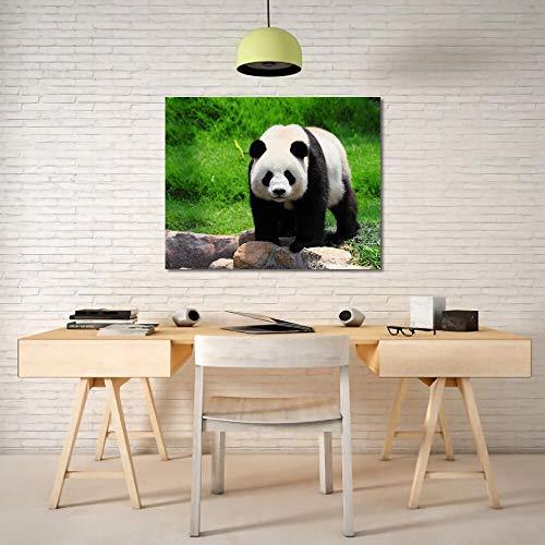 LPaWD Leinwanddruck Kalligraphie Niedlicher chinesischer Panda Tier Poster und Drucke Wandkunst für Wohnraum Wohnkultur Wandbild A4 70X100cm
