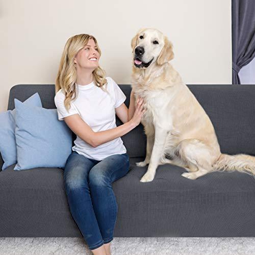 subrtex 1-Pezzo Copridivano Elasticizzato Tre Posti AntiGraffio per Gatto Cani, Moderno Divano Protector Lavabile (3 Posti, Grigio)