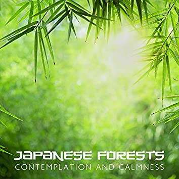 Japanese Forests: Contemplation and Calmness