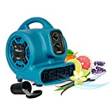 XPOWER P-260AT Freshen Mini Mighty Scented Air Mover, Utility Fan, Dryer, Blower with Power Outlets & Timer-1/5 HP, 800 CFM, 4 Speeds