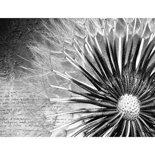 Fototapete Pusteblumen Schwarz Weiß Vintage Vlies Wand Tapete Wohnzimmer Schlafzimmer Büro Flur Dekoration Wandbilder XXL Moderne Wanddeko Flower 100% MADE IN GERMANY - Runa Tapeten 9023010c