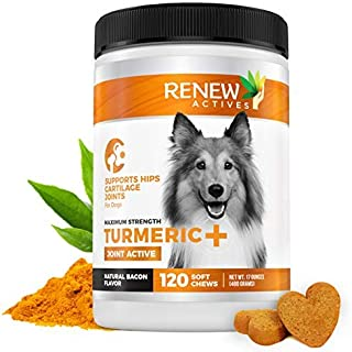 Renew Actives Dog Joint Pain Support Supplement Natural, Advanced Organic Turmeric Joint Supplement for Dogs - Canine Chewable Hip, Joint & Arthritis Formula for Mobility - 120 Soft Chews