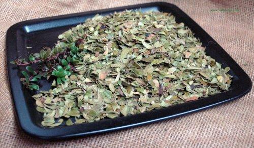 Naturix24 – Bärentraubenblättertee, Bärentraubenblätter ganz – 500 g Beutel