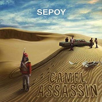 Camel Assassin