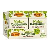 Plastikfreier Natur Kaugummi Grüne Minze | 12 Stk.| Natürliche Kaumasse (Chicle) | Zahnpflegend (Xylit) | Zuckerfrei | Umweltfreundlich | Birkengold